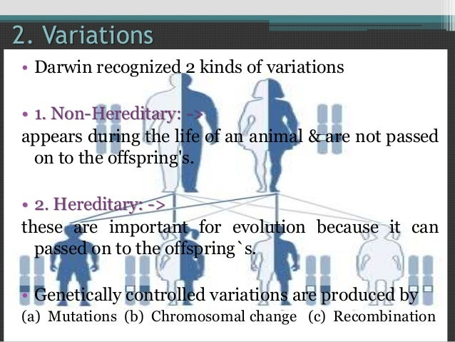 modern synthetic theory of evolution pdf
