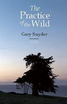 the wild party poem pdf